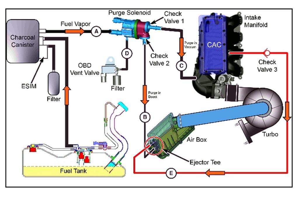 Упрощённый вид системы EVAP